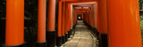 Torii Gates of a Shrine, Fushimi Inari-Taisha, Fushimi Ward, Kyoto, Honshu, Japan Wall Decal by  Panoramic Images