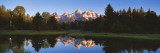 Beaver Pond Grand Teton National Park, WY Wall Decal by  Panoramic Images