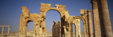 Old Ruins of Palmyra, Syria Wall Decal by  Panoramic Images