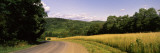 Road Passing Through a Landscape, Windsor, Broome County, New York State, USA Wall Decal by  Panoramic Images