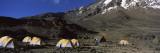 Tents on a Plateau, Shira Plateau, Mt Kilimanjaro, Kilimanjaro National Park, Tanzania Wall Decal by  Panoramic Images