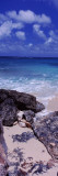 View of Rocks on the Beach, Island Harbour, Anguilla Wall Decal by  Panoramic Images