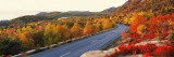 Park Loop Road Acadia National Park Me, USA Wall Decal by  Panoramic Images