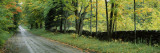 Road Passing Through a Forest, Caledonia County, Vermont, USA Wall Decal by  Panoramic Images