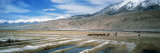 View of Salt Evaporation Pond, Muztagh Ata, Karakul Lake, Xinjiang Province, China Wall Decal by  Panoramic Images
