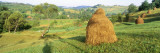 Farm Transylvania Romania Wall Decal by  Panoramic Images