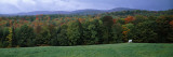 Horse Grazing in a Field, Caledonia County, Vermont, USA Wall Decal by  Panoramic Images