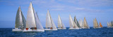 Yachts in the Ocean, Key West, Florida, USA Wall Decal by  Panoramic Images