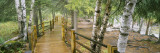 Boardwalk Along a River, Gooseberry River, Gooseberry Falls State Park, Minnesota, USA Wall Decal by  Panoramic Images