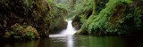 Waterfall in a Forest, Punch Bowl Falls, Eagle Creek, Hood River County, Oregon, USA Wall Decal by  Panoramic Images