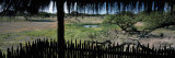 View from a Hut, Waterhole, Onguma Bush Camp, Etosha National Park, Kunene Region, Namibia Wall Decal by  Panoramic Images