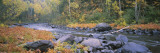 River Flowing Through a Forest, Brule River, Judge C.R. Magney State Park, Minnesota, USA Wall Decal by  Panoramic Images