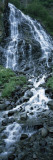 Waterfall in a Forest, Horsetail Falls, Valdez, Alaska, USA Wall Decal by  Panoramic Images