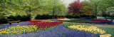 Flowers in a Garden, Keukenhof Gardens, Lisse, Netherlands Wall Decal by  Panoramic Images