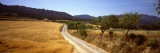 Dirt Road Passing Through a Field, Bot, Terra Alta, Tarragona Province, Catalonia, Spain Wall Decal by  Panoramic Images