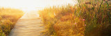 Grass on the Both Sides of a Pier, Laurel Pond, Pokagon State Park, Indiana, USA Wall Decal by  Panoramic Images