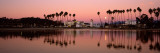 Reflection of Trees in Water, Santa Barbara, California, USA Wall Decal by  Panoramic Images