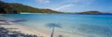 Shadow of Trees on Beach, Hawksnest Bay, Virgin Islands National Park, St. John, Us Virgin Islands Muursticker van Panoramic Images