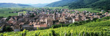 View of a Village, Riquewihr, Haut-Rhin, Alsace, France Wall Decal by  Panoramic Images