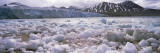 Ice Floes in the Sea with a Glacier in the Background, Norway Wall Decal by  Panoramic Images