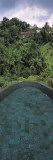 View of a Swimming Pool, Ubud Hanging Gardens, Ayung Valley, Ubud, Bali, Indonesia Wall Decal by  Panoramic Images