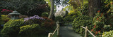 Plants in a Garden, Japanese Tea Garden, San Francisco, California, USA Wall Decal by  Panoramic Images