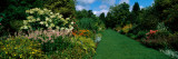 Flowers in a Garden, Hillier Gardens, New Forest, Hampshire, England Wall Decal by  Panoramic Images