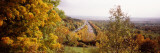Trees with a Highway in the Background, Bundesautobahn 81, Baden-Wurttemberg, Germany Wall Decal by  Panoramic Images