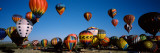 Albuquerque International Balloon Fiesta, Albuquerque, New Mexico, USA Wall Decal by  Panoramic Images