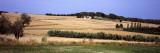 Crops in Fields, Bot, Terra Alta, Tarragona Province, Catalonia, Spain Wall Decal by  Panoramic Images