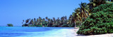 Tropical Trees on the Beach, Maldives Wall Decal by Panoramic Images 