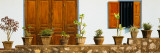 Potted Plants Outside a House, Luang Phabang, Laos Wall Decal by  Panoramic Images