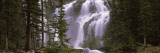 Waterfall in a Forest, Banff, Alberta, Canada Wall Decal by  Panoramic Images