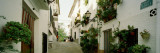 Houses Along a Street, Guadalest, Alicante, Spain Wall Decal by Panoramic Images