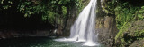 Waterfall in a Forest, Saut De La Lezarde, Basse-Terre, Guadeloupe Wall Decal by  Panoramic Images