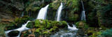 Waterfall in a Forest, Bastareny River, Berga, Barcelona, Catalonia, Spain Wall Decal by  Panoramic Images