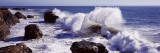 Waves Breaking on the Coast, Santa Cruz, Santa Cruz County, California, USA Wall Decal by  Panoramic Images