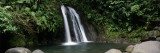 Waterfall in a Forest, Cascade Aux Ecrevisses, Guadeloupe National Park, Guadeloupe Wall Decal by  Panoramic Images