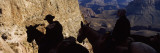 Mule Riders and Hikers on the Trail, South Kaibab Trail, Grand Canyon National Park, Arizona, USA Wall Decal by  Panoramic Images