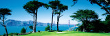 Golf Course W\ Golden Gate Bridge San Francisco Ca, USA Wall Decal by  Panoramic Images
