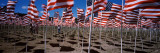 American Flags Laid Out in a Field, Questa, Taos County, New Mexico, USA Wall Decal by  Panoramic Images