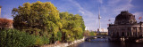 Museum on the Riverbank, Bode-Museum, Spree River, Museum Island, Berlin, Germany Wall Decal by  Panoramic Images