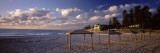 Sunshades on the Beach, Indiana Tea House, Cottesloe Beach, Perth, Western Australia, Australia Wall Decal by  Panoramic Images
