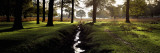 Stream Passing Through a Park, Richmond Park, London, England Wall Decal by  Panoramic Images