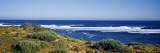 Waves Breaking on the Beach, Western Australia, Australia Wall Decal by  Panoramic Images