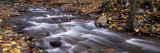 River Flowing Through a Forest, Delaware Water Gap National Recreation Area, New Jersey, USA Wall Decal by  Panoramic Images