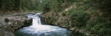 Waterfall in a Forest, Mccloud Falls, Lower Falls, Mt Shasta, California, USA Wall Decal by  Panoramic Images