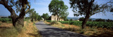 Road Passing Through Village, Sant Marti Sarroca, Alt Penedes, Barcelona Province, Catalonia, Spain Wall Decal by  Panoramic Images