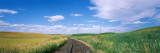 Railroad Track Passing Through a Field, Whitman County, Washington State, USA Wall Decal by  Panoramic Images