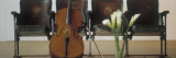Cello Leaning on Attached Chairs Wall Decal by Panoramic Images